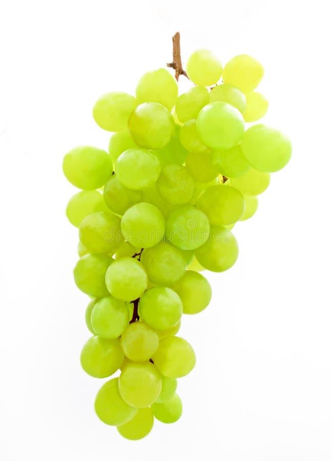 Grupo de uvas verdes foto de stock royalty free