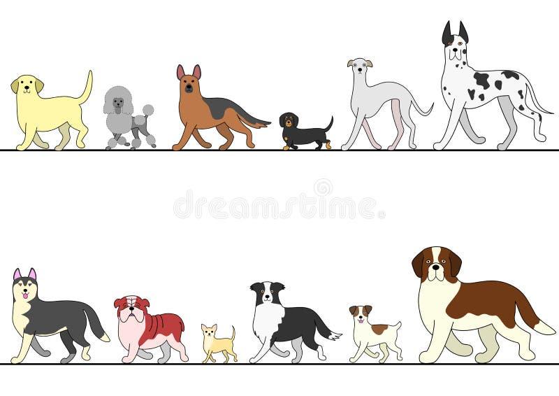 Grupo de vários cães que andam na linha ilustração do vetor