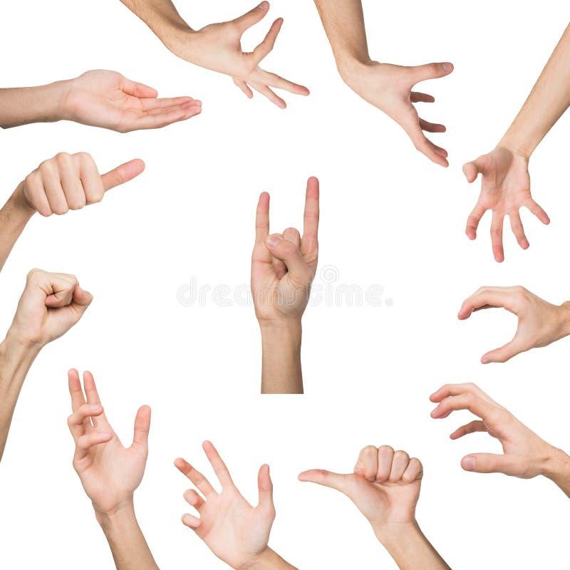 Grupo de vários gestos de mão isolado no branco imagem de stock royalty free