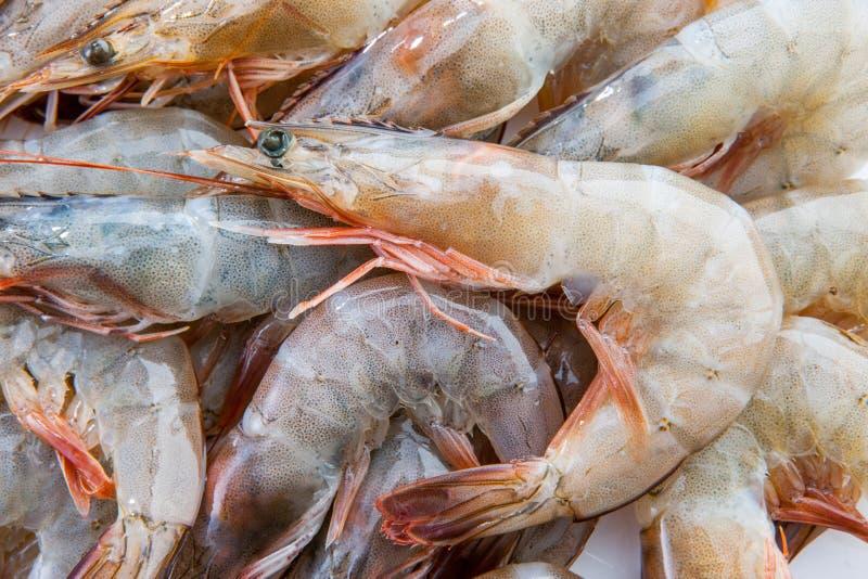 grupo de vannamei vermelho do camarão da pele do marisco fresco dos camarões dos camarões fotografia de stock royalty free