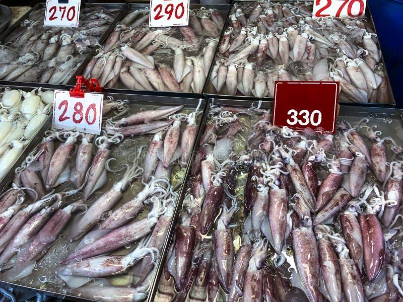 Grupo de venda fresca do calamar no mercado local imagem de stock