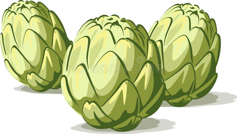 Grupo de verdura verde de la alcachofa aislada en blanco ilustración del vector