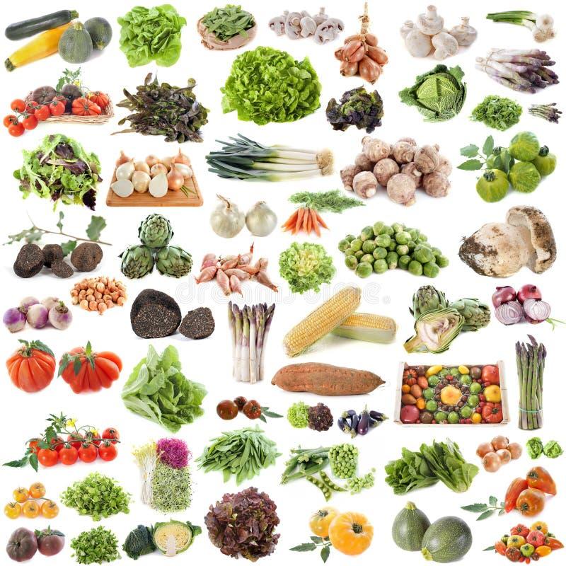 Grupo de verduras fotografía de archivo