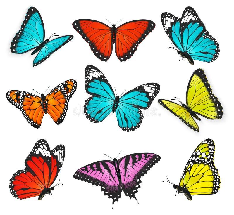 Grupo de vetor colorido das borboletas ilustração do vetor