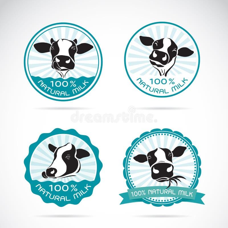 Grupo de vetor que as vacas de leiteria etiquetam no fundo branco, animais ilustração do vetor