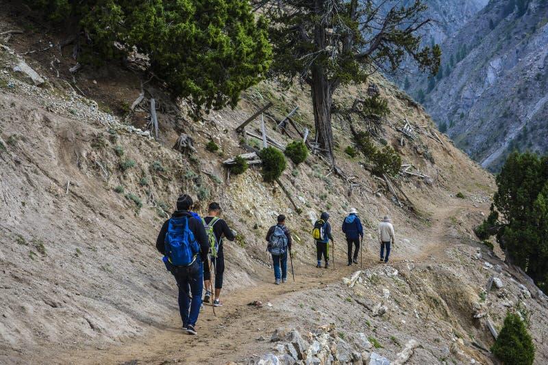 Grupo de viajantes que trekking para trás dos prados feericamente foto de stock