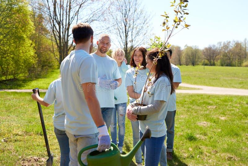 Grupo de voluntários com as plântulas da árvore no parque fotografia de stock royalty free