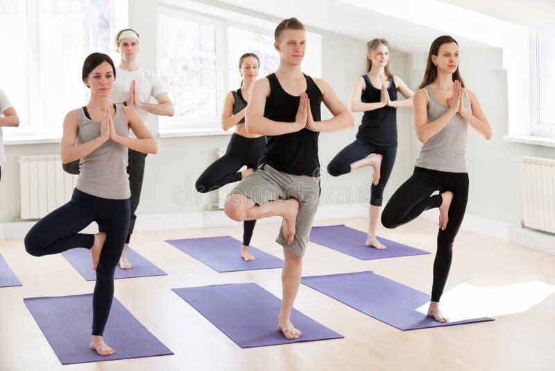 Grupo de yoga practicante de la gente deportiva joven, haciendo Vrksasana ex foto de archivo