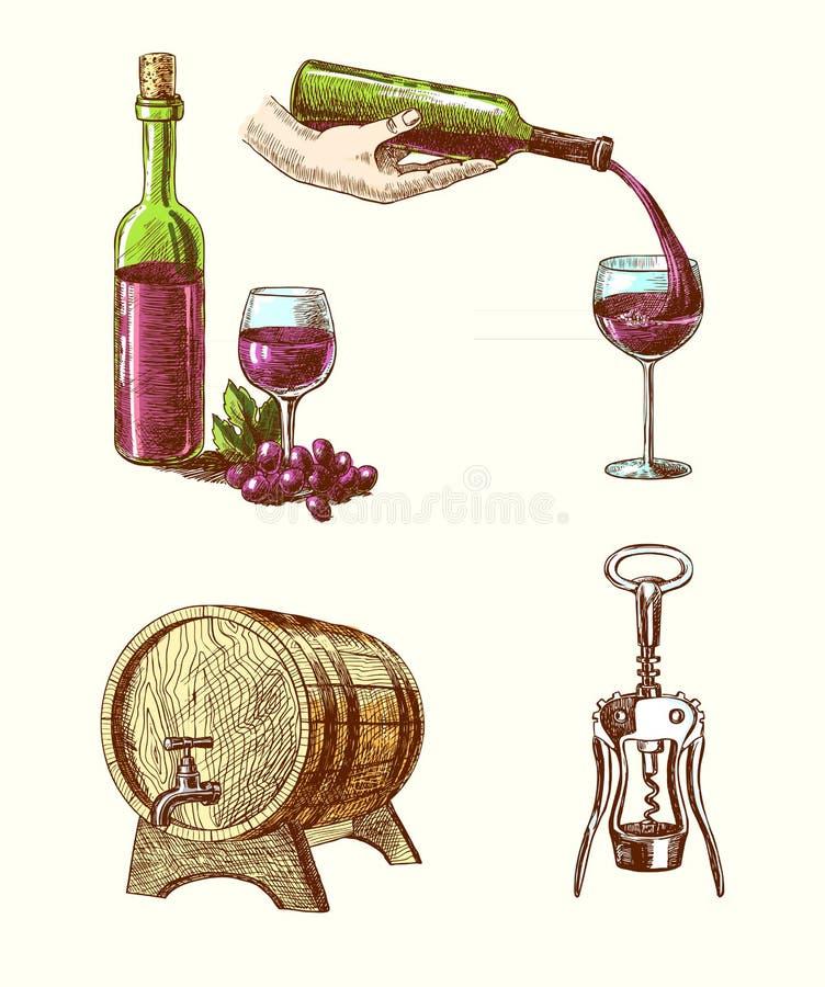 Grupo decorativo do esboço do vinho ilustração stock