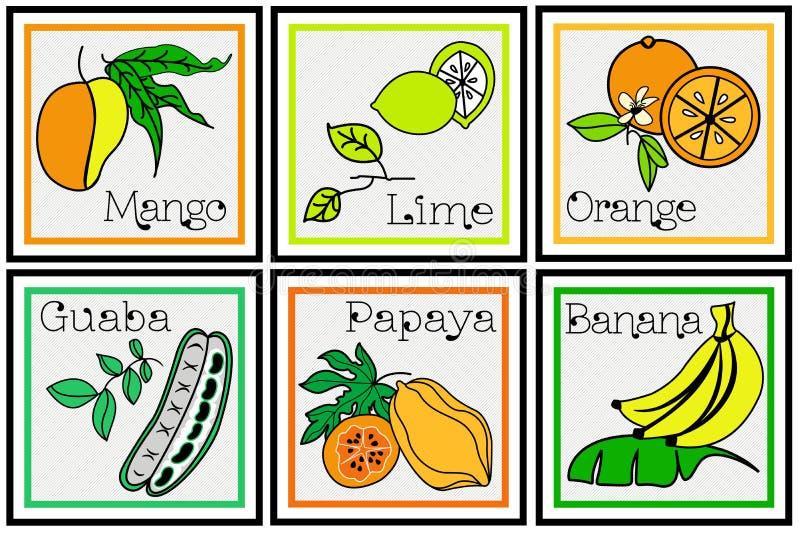 Grupo descritivo do fruto tropical ilustração royalty free