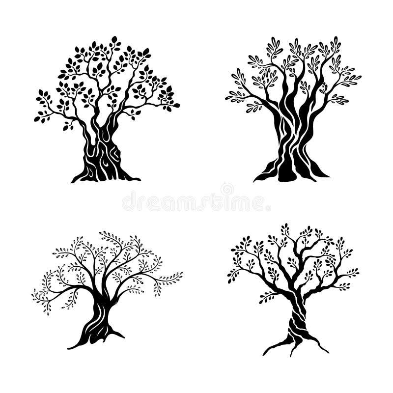 Grupo do ícone da silhueta das oliveiras isolado no fundo branco Sinal do vetor do óleo Projeto superior do logotipo da ilustraçã ilustração stock