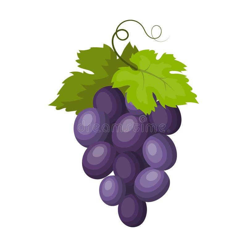Grupo do ícone das uvas para vinho no estilo dos desenhos animados isolado no fundo branco Ilustração do vetor do estoque do símb ilustração stock