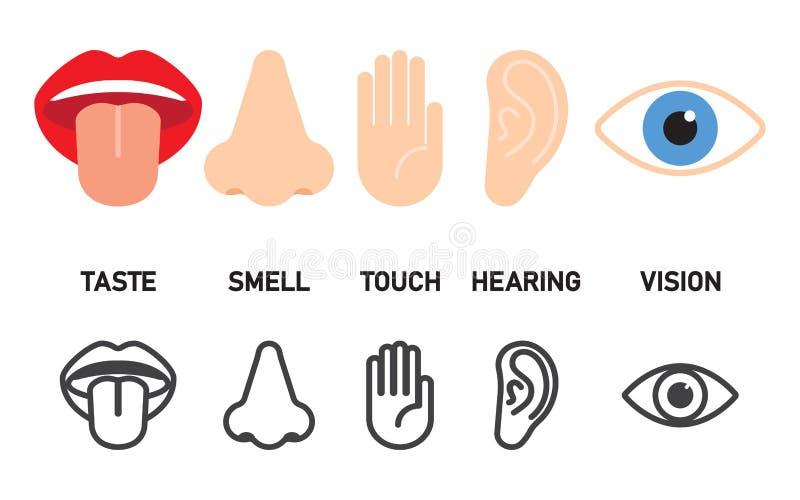 Grupo do ícone de cinco sentidos humanos ilustração royalty free