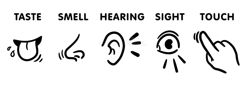 Grupo do ícone de cinco sentidos, ilustrações educacionais desenhados à mão engraçadas do vetor para crianças: 5 sentimentos do s ilustração royalty free