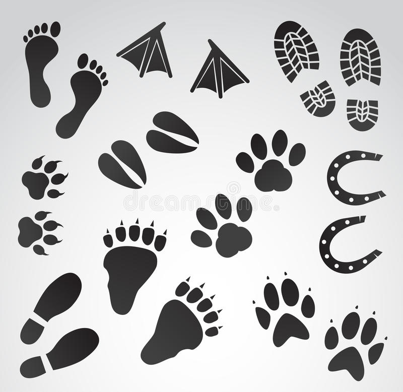 Grupo do ícone do vetor das pegadas ilustração royalty free