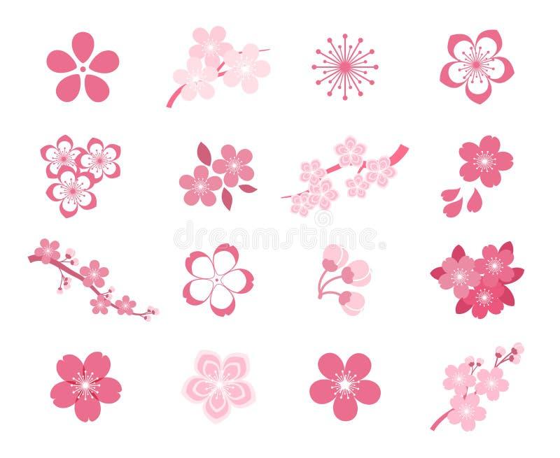 Grupo do ícone do vetor de sakura do japonês da flor de cerejeira ilustração royalty free
