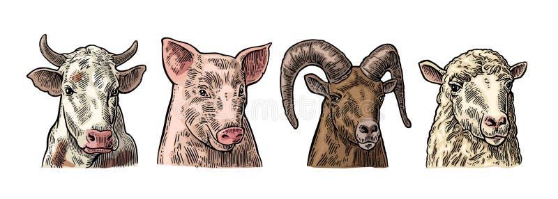 Grupo do ícone dos animais de exploração agrícola Cabeças do porco, da vaca, dos carneiros e da cabra ilustração do vetor