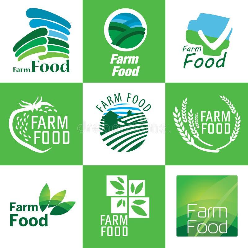 Grupo do alimento biológico ilustração royalty free