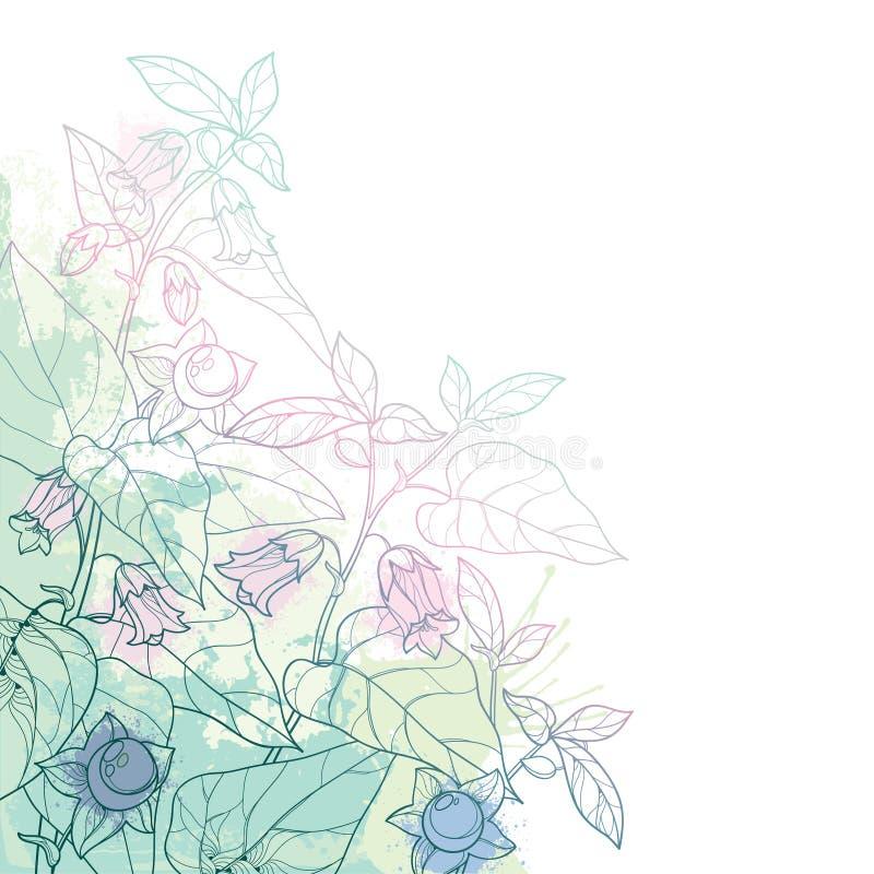 Grupo do canto do vetor da beladona tóxica da atropa do esboço ou da flor do nightshade mortal, do botão, da baga e da folha no v ilustração stock