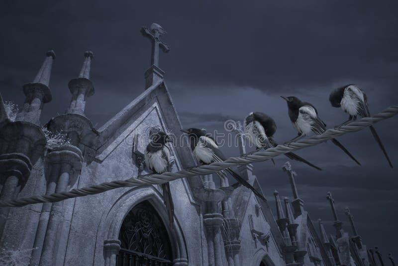Grupo do cemitério das pegas imagens de stock royalty free