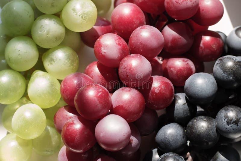 Grupo do close-up em um fundo branco, lugar das uvas para o texto foto de stock