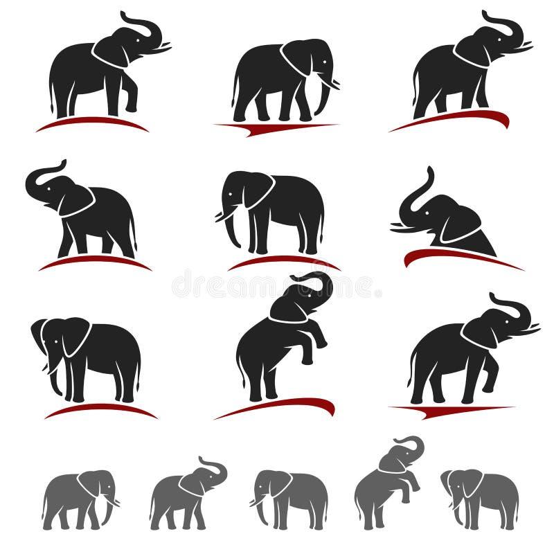 Grupo do elefante Vetor ilustração do vetor