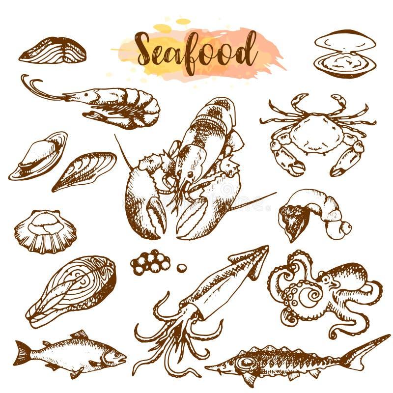 Grupo do esboço do marisco Os peixes, camarão, caranguejo, lagosta, polvo, moluscos isolaram o gráfico em um fundo branco um grup ilustração stock