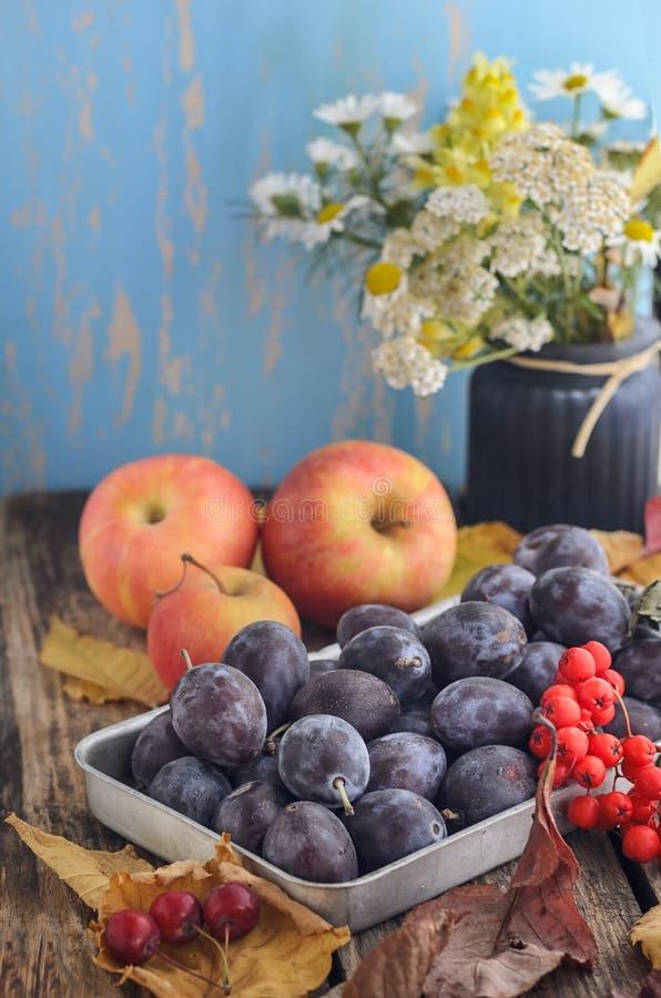 Grupo do fruto de maçãs, ameixas, ramalhete das flores imagem de stock royalty free
