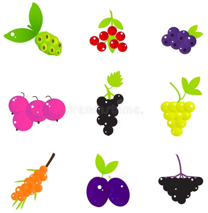 Grupo do fruto e de bagas do verão ilustração royalty free