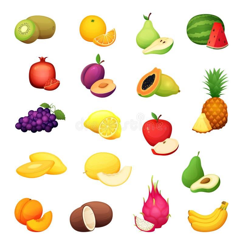 Grupo do fruto Ilustração do vetor dos desenhos animados da colheita fresca da exploração agrícola do projeto colorido ilustração do vetor