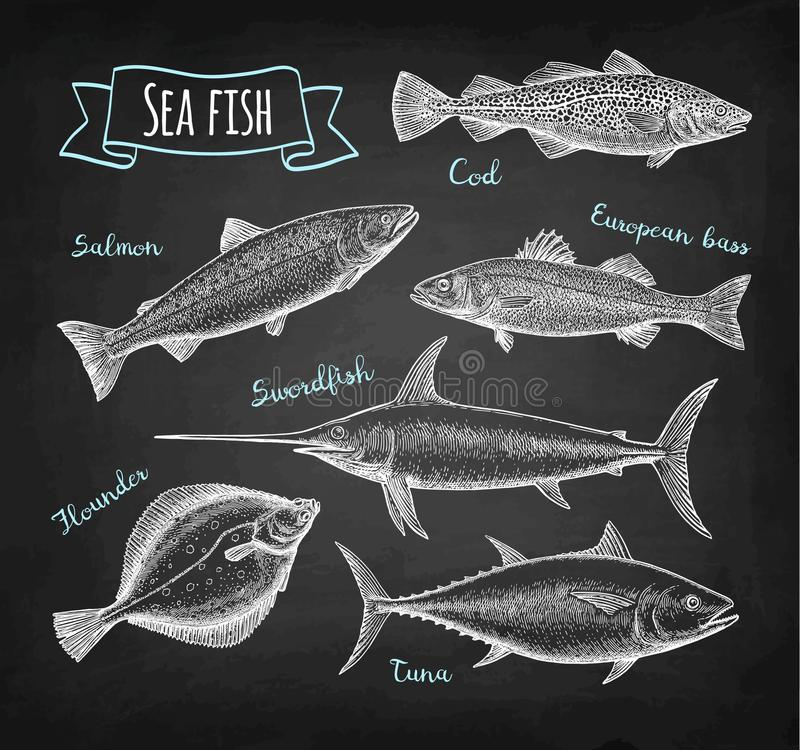 Grupo do giz do alimento de mar ilustração royalty free