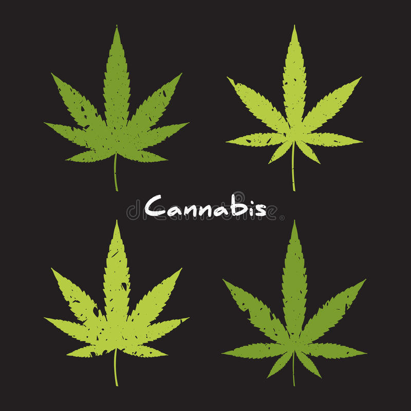 Grupo do logotipo do cannabis ilustração do vetor