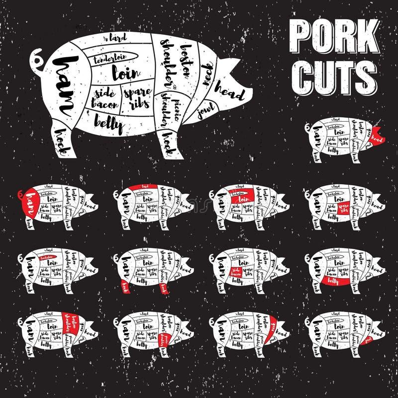 Grupo do molde do vetor dos cortes de carne de porco ilustração stock