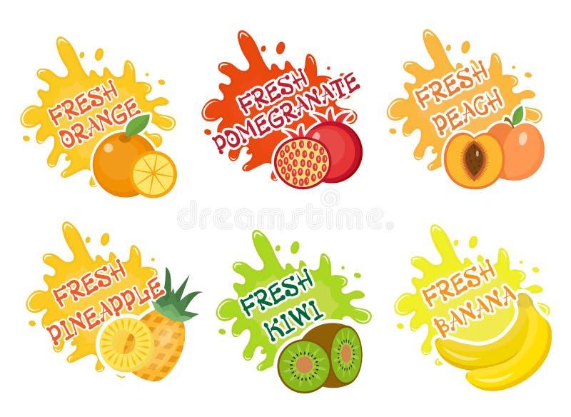 Grupo do respingo dos frutos de etiquetas O fruto espirra, deixa cair a coleção do emblema e da mancha Ilustração do vetor ilustração royalty free
