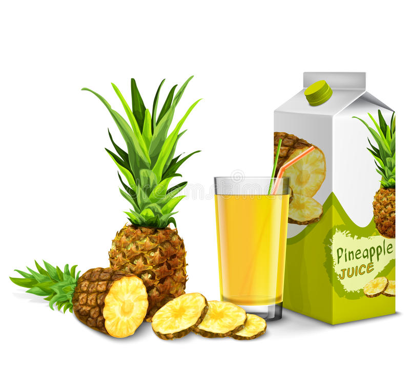 Grupo do suco de abacaxi ilustração stock