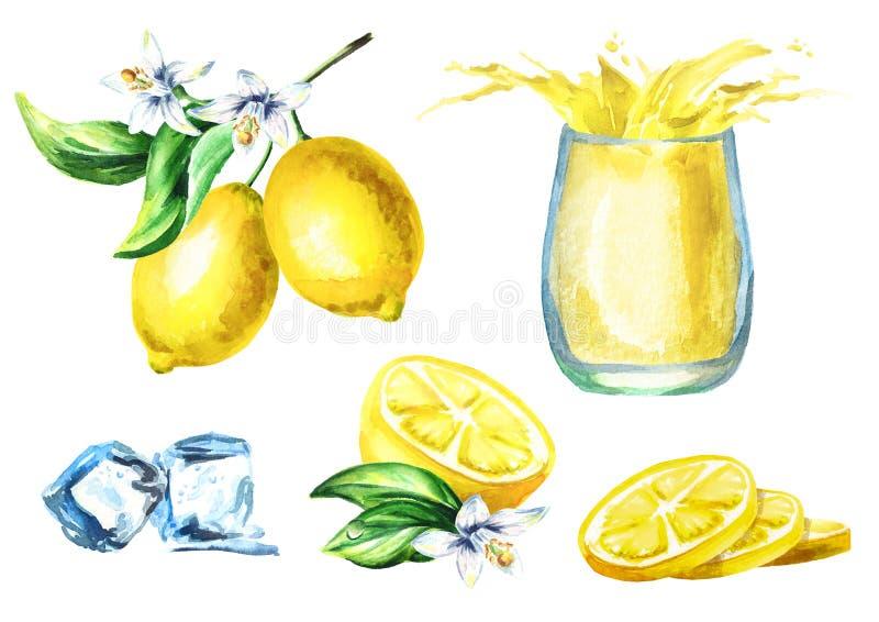 Grupo do suco de limão com respingo no vidro, cubos de gelo do ADN dos frutos Ilustração tirada mão da aquarela ilustração stock