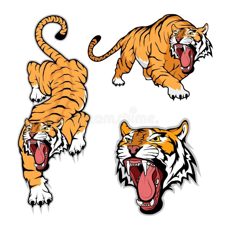 Grupo do tigre, no fundo branco ilustração royalty free