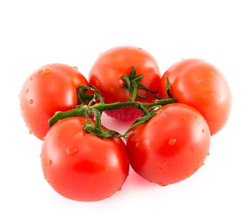 Grupo do tomate vermelho sobre o fundo branco imagens de stock