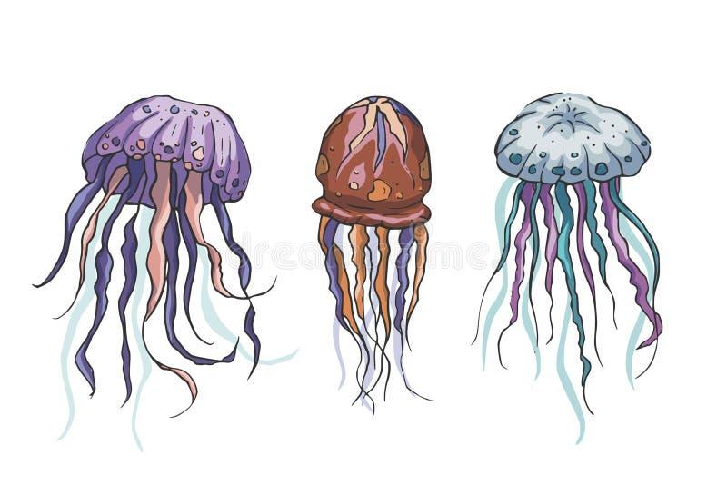 Grupo do vetor das medusas ilustração royalty free