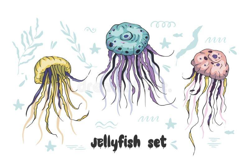 Grupo do vetor das medusas ilustração stock