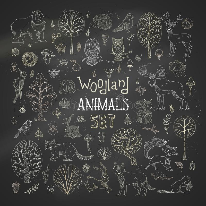 Grupo do vetor de árvores, de animais, de pássaros e de insetos do outono do giz no fundo do quadro-negro ilustração do vetor