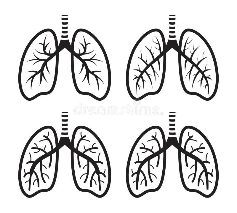 Grupo do vetor de ícone liso dos pulmões humanos ilustração do vetor