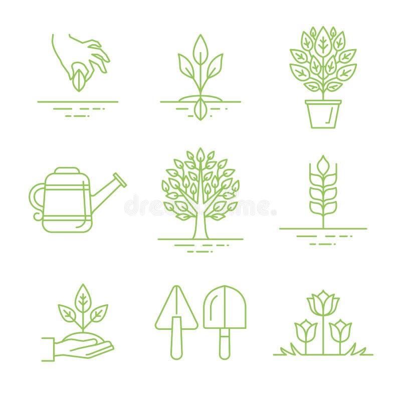 Grupo do vetor de ícones de jardinagem e de ilustrações lineares ilustração do vetor