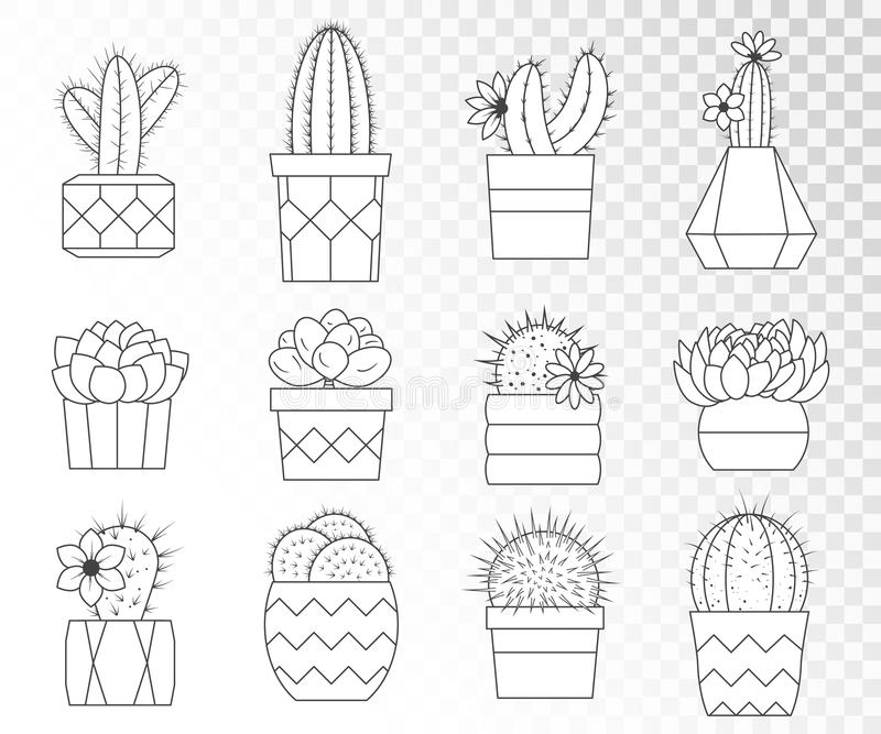 Grupo do vetor de cactos e de plantas carnudas em uns potenciômetros de flor ilustração royalty free