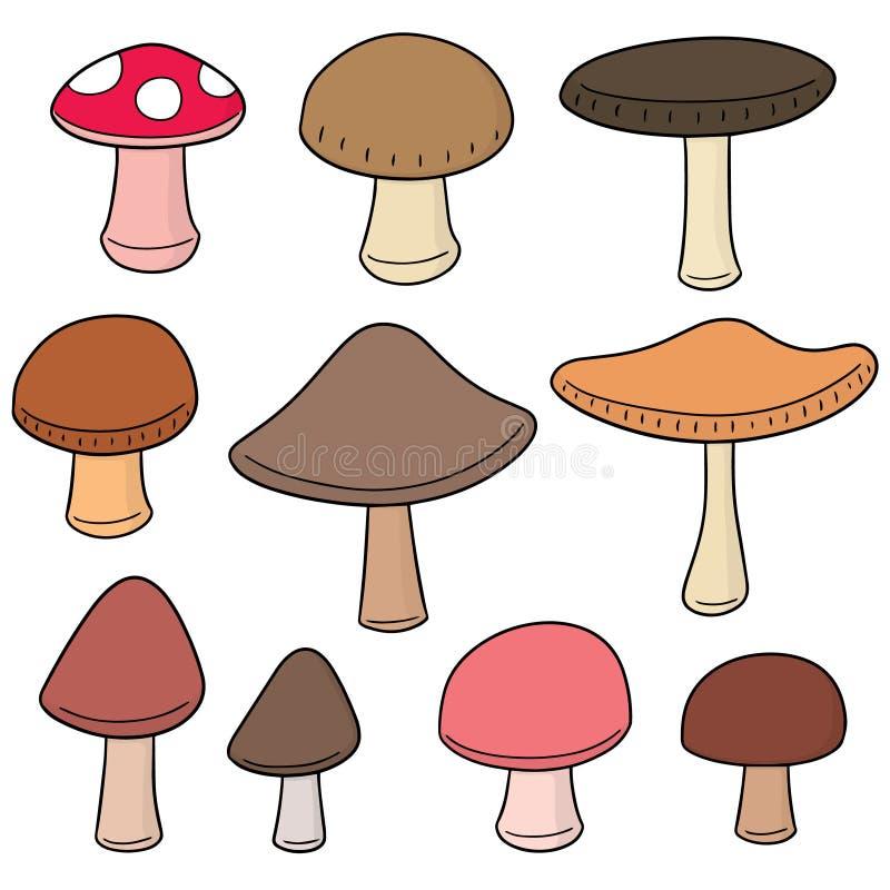 Grupo do vetor de cogumelo ilustração stock
