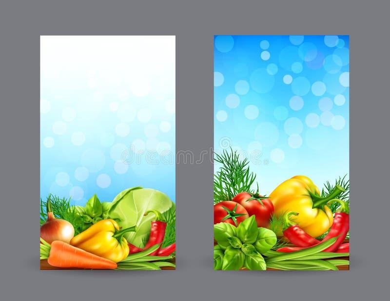 Grupo do vetor de duas bandeiras verticais com os vegetais realísticos para ilustração royalty free