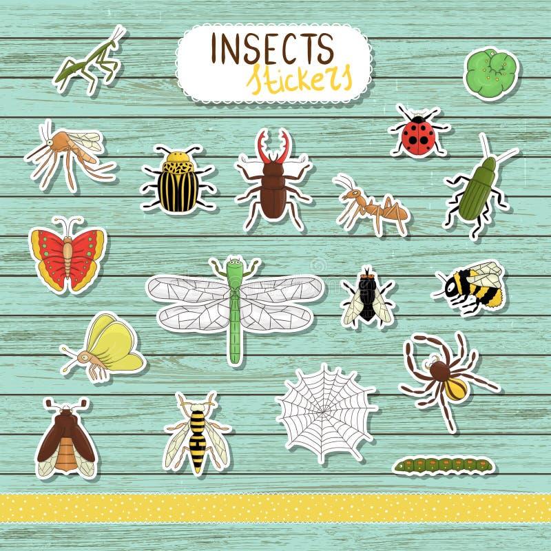 Grupo do vetor de etiquetas coloridas do inseto no fundo de madeira azul ilustração royalty free