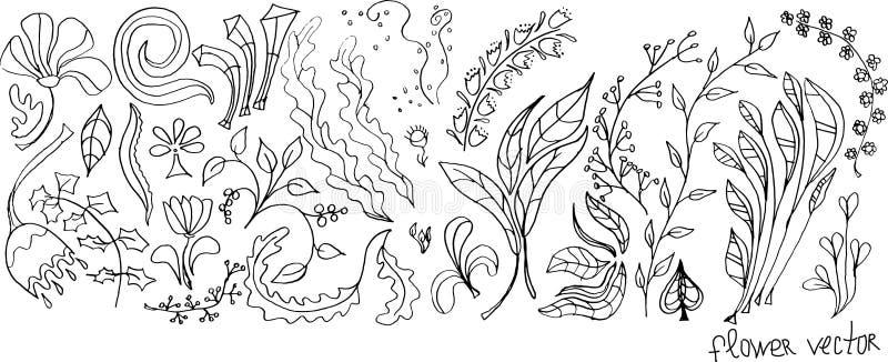 Grupo do vetor de flores e de folhas imagem de stock