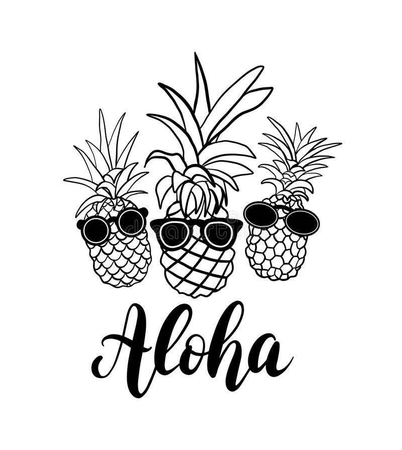 Grupo do vetor de fruto de cinco abacaxis Coleção tropical das férias de verão Projeto para a cópia Ilustração preto e branco ilustração stock