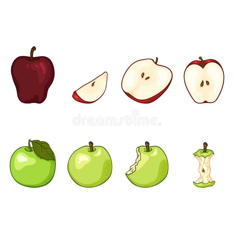 Grupo do vetor de ilustrações de Apple dos desenhos animados Fruto inteiro, cortado e mordido ilustração royalty free